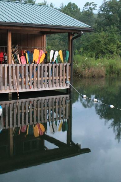 CB paddles vert